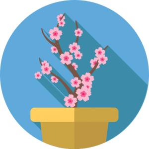 Bloemen voorvertoning